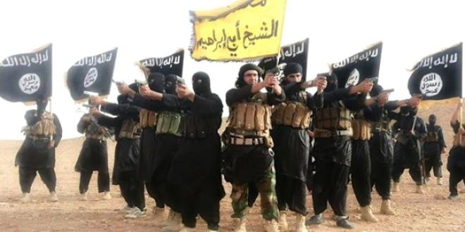 ISIS får oväntad stöd från SD-anhängare