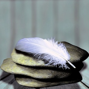 feather-1359097_1280
