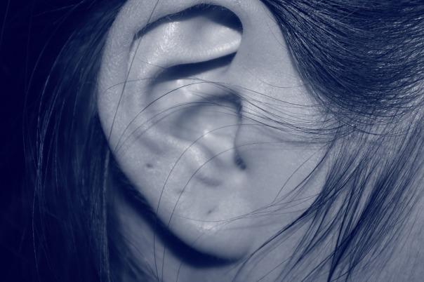ear-207405_1280