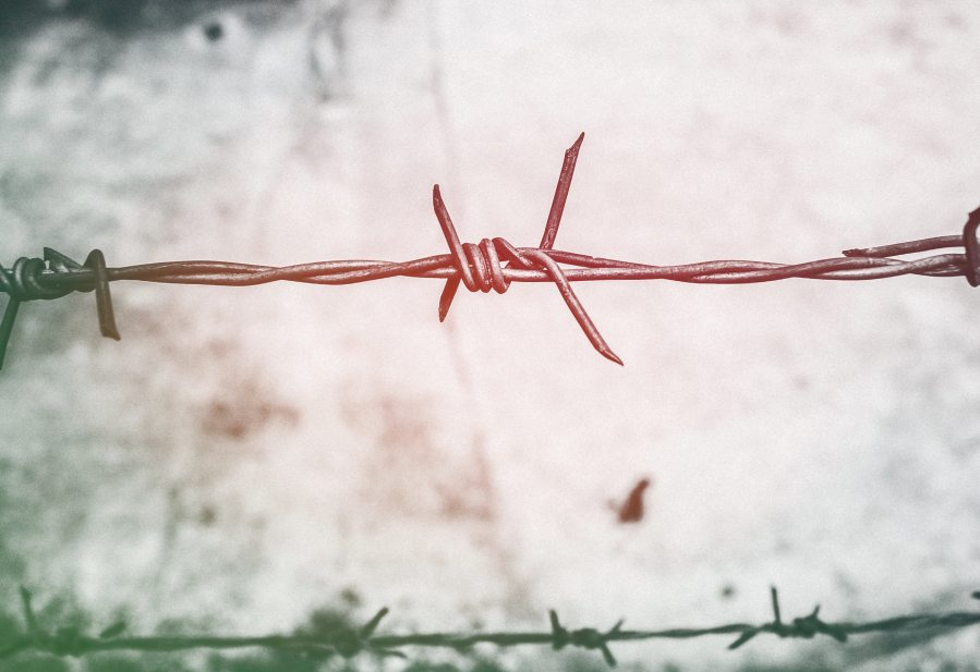 barb-wires-barbed-wire-blur-593101.jpg