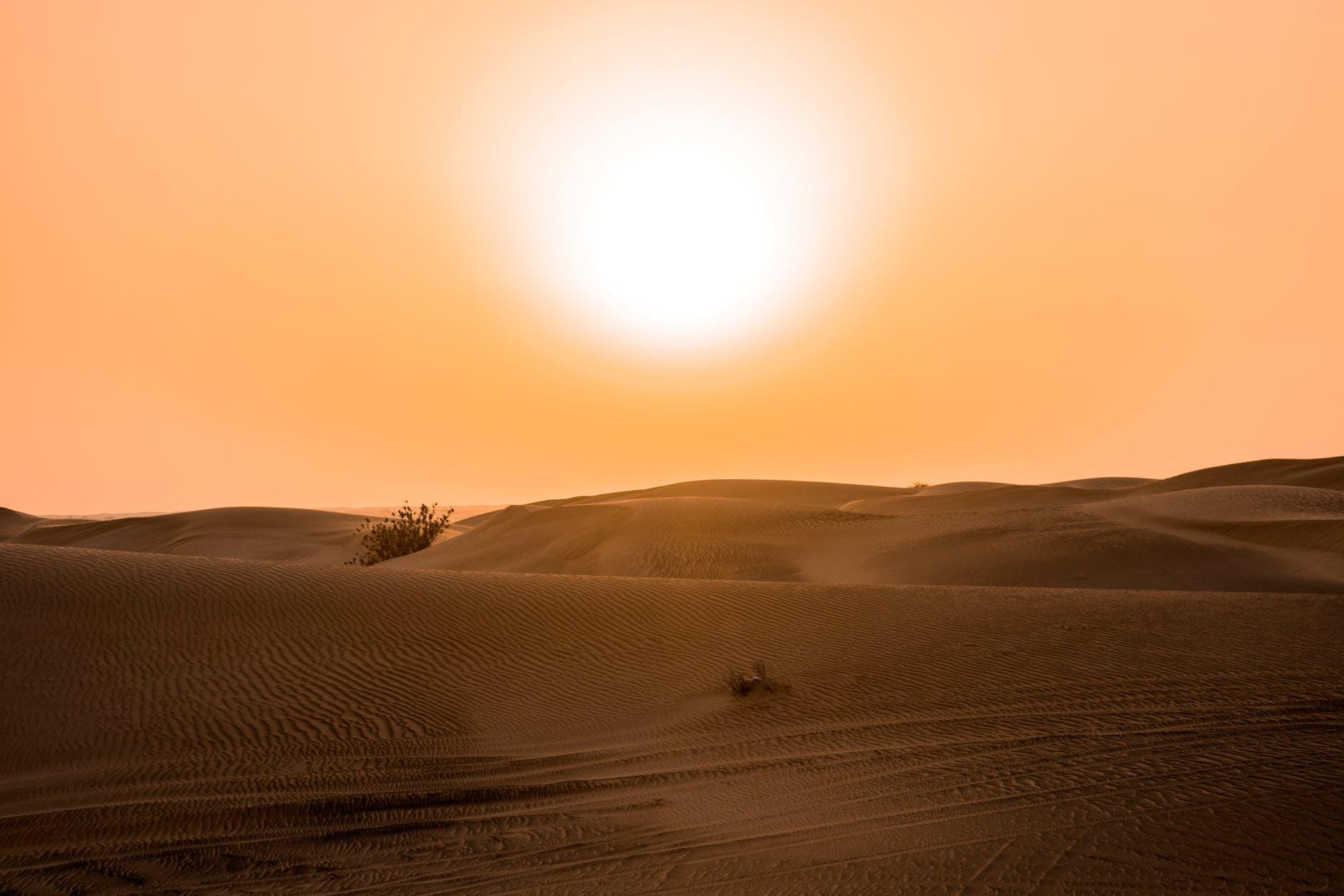 IPCC, 1,5 grader och en ojämlik värld