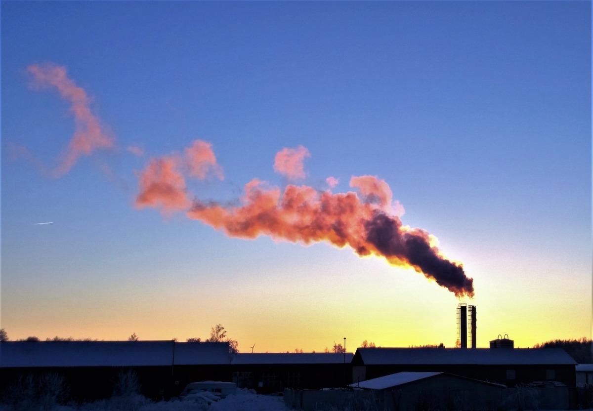 Om att vara ung i miljöförstöringens tid.